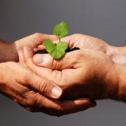 Sozialpädagoge: Ein Beruf, den es immer brauchen wird