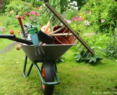 Gärtnerlehre: Arbeitsplatz Natur pur!