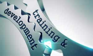 Teamentwicklung, Teamarbeit: ein jegliches nach seiner Art