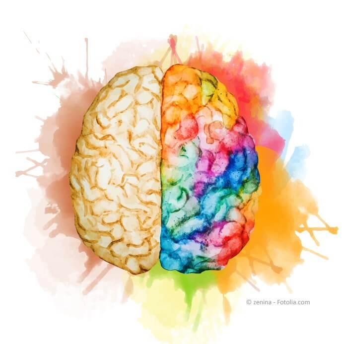 Denkprozesse und Handlen auslösen, das uns vieles andere lernt man an einer Coching Ausbildung.